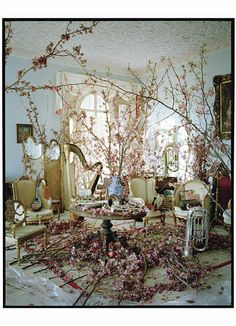 AMAZING shot by Tim Walker from W magazine, love the whole styling, blossom everywhere