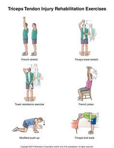 Triceps tendon injury rehabilitation exercises.