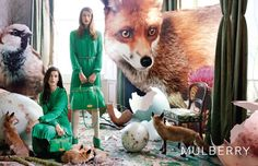 mulberry-tim walker