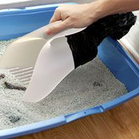 Scute - Cat Litter Scoop with Bag .... would love to get my hands on one of these!! Love my kitty party maniacs but I don't love their pewp! :p