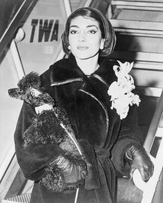 Only my dogs will not betray me. -Maria Callas