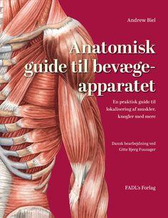 Anatomisk guide til bevægeapparatet | Arnold Busck