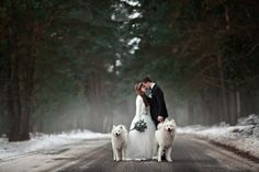 Use these winter wedding ideas, invitation tips, and winter wedding invitation wording ideas to put together a spectacular winter, holiday, or NYE wedding. Winter Wedding Invitations, Wedding Invitation Wording, Ski Wedding, Merry Christmas Photos, Wedding Readings, Winter Wonderland Wedding, Winter Wedding Inspiration, Photo Couple, Holiday Postcards