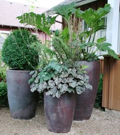Planters, House Plant Pots Containers In Artificial Flowers For Large Pots Outside Grounded Design: amusing garden pots and planters Potted Plants For Shade, Potted Plants Patio, Large Outdoor Planters, Large Garden Pots, Large Plant Pots, Outdoor Pots, Tall Plants, Large Plants, Modern Planters