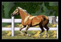 Stained Glass Pattern Stallion Romp