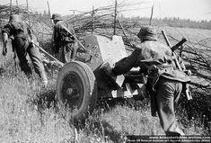 Pièce d'artillerie de la SS Totenkopf.