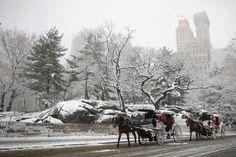 New York City, New York, US - REUTERS/Brendan McDermid