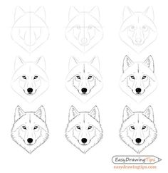 How to Draw a Wolf Face & Head Step by Step - EasyDrawingTips How to Draw . - How to Draw a Wolf Face & Head Step by Step – EasyDrawingTips How to Draw a Wolf Face & Head Ste - Easy Doodles Drawings, Easy Disney Drawings, Cute Easy Drawings, Pencil Art Drawings, Art Drawings Sketches, Wolf Face Drawing, Wolf Drawing Easy, Drawing Tips, Drawing Drawing