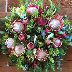 Protea Wreaths Our beautiful Protea wreaths are made with many large fresh Protea flowers placed on a background of eucalyptus leaves.