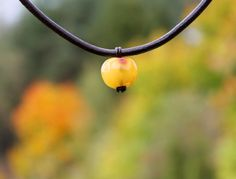Apple Necklace Yellow Amber Pendant Teacher gift by DreamsFactory #apple #amber #fall #eathernecklace #baltic_amber