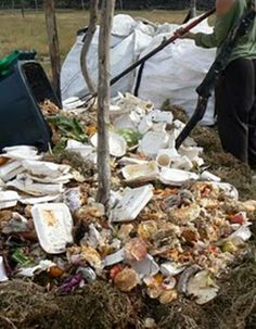 Composting biodegradable food packaging and food waste at Rocking the Daisies Festival.