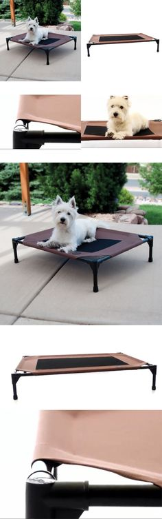Beds 20744: Portable Elevated Dog Cat Bed Raised Pet Cot Cool Sleep Camping  Indoor Outdoor