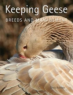 Keeping Geese: Breeds and Management by [Ashton, Chris]
