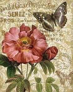 Memories of Paris IV by Abby White ~ floral art Decoupage Vintage, Decoupage Paper, Vintage Diy, Vintage Labels, Vintage Ephemera, Vintage Paper, Vintage Postcards, Vintage Cards, Art Floral