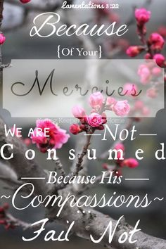 Through the Lord 's mercies we are not consumed, Because His compassions fail not. They are new every morning; Great is Your faithfulness. (Lamentations 3:22, 23 NKJV)