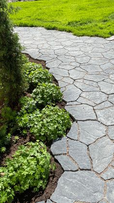 Stepping Stones, Sidewalk, Garden, Outdoor Decor, Home Decor, Stair Risers, Garten, Decoration Home, Room Decor