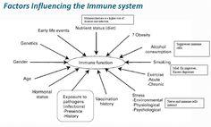 factors affecting immunity