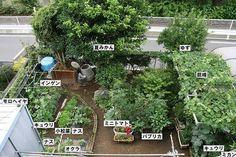 Staycation, Vegetable Garden, Landscape, Architecture, Beach, Yahoo, Gardening, House, Plants