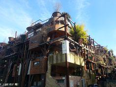 Casa dell'albero, via Chiabrera 25, arch. Luciano Pia, DeGa