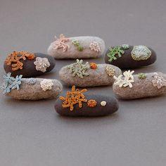 lichen brooches by Elin Thomas