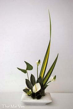images of ikebana flower arrangement Contemporary Flower Arrangements, Creative Flower Arrangements, Beautiful Flower Arrangements, Flower Centerpieces, Flower Vases, Flower Decorations, Beautiful Flowers, Ikebana Arrangements, Ikebana Flower Arrangement