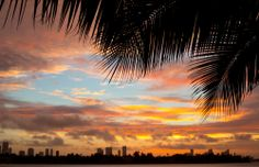 Si tienes el placer de visitar #Miami, conocerás algunas de las playas más alucinantes del Atlántico, además vivirás increíbles aventuras en una de las ciudades más hermosas de #Estados Unidos. http://www.bestday.com.mx/Miami-area-Florida/Atracciones/