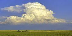 Great plaines, Robert Alan Clayton
