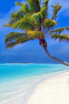 Paradise...wish I was there right now so bad!!!