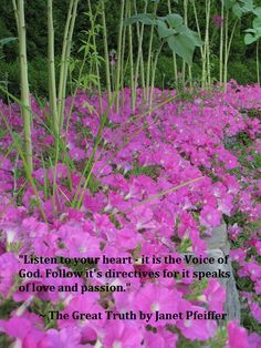 """""""Listen to your heart - it is the Voice of God. Follow it's directives for it speaks of love and passion."""" ~ The Great Truth by Janet Pfeiffer Please share this message.  Learn more @ http://www.pfeifferpowerseminars.com/pps1-products.html"""