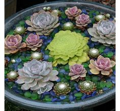 Create the illusion of a water garden by planting a selection of succulents in a bird bath or fountain; add blue and green glass pebbles on top of the soil.