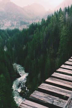 Vance Creek Bridge, Washington.