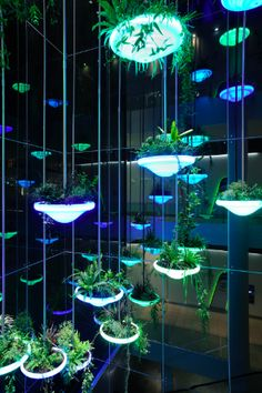 plants in the interior hybridizing with everyday objects. Casa Bunker, Futuristic Design, Street Furniture, Light Installation, Plant Design, Light Art, Event Decor, Architecture, Glow