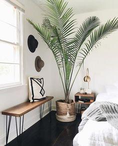 Bedroom | Plants | Home inspiration | Interior design | Inspo | More on fashionchick.nl