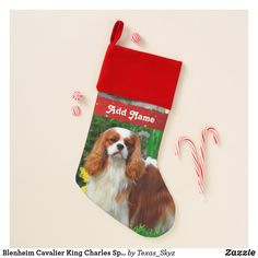 Blenheim Cavalier King Charles Spaniel Dog Christmas Stocking Christmas Animals, Christmas Dog, Cavalier King Charles Spaniel, Pet Christmas Stockings, Santa Claus Is Coming To Town, Spaniel Dog, Christmas Card Holders, Age, Unisex