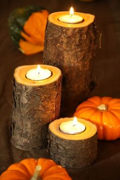 Easy Fall Candle Project is part of Thanksgiving crafts Tea Lights - Here is an easy DIY Fall candle project You will need access to wood at least three inches in diameter We used buckthorn which is a very invasive bush that ma… Diy Candles Easy, Fall Candles, Tea Candles, Fall Crafts, Diy Crafts, Upcycled Crafts, Rustic Fall Decor, Rustic Mantel, Dyi Fall Decor