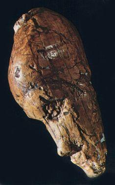 The Mammoth Ivory Female head from Dolni Vestonice  Known as the Dolni Vestonice Venus XV