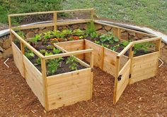 How to start a vegetable garden tips for growing a vegetable garden,what order to plant vegetable garden backyard veggie garden,small balcony garden design ideas where is the winter garden theatre.