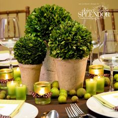 Great eco- friendly centerpiece idea with potted boxwoods and apples!