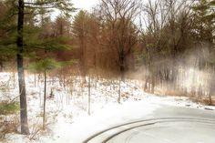 """Snow in Spring"" by Terry Davis #snow #winter #haze #mist #landscape @terryikon"