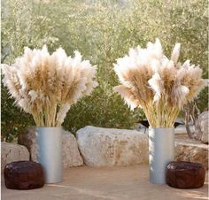The Pampas Grass Cortaderia selloana development flowers marriage ceremony 2019 9 Garden Party Decorations, Wedding Decorations, Deco Table Champetre, Wedding Bouquets, Wedding Flowers, Boho Home, Wedding 2017, Flower Pots, Grass