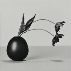Robert Mapplethorpe - Flowers 1984