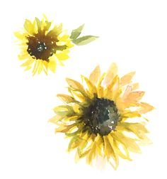 SUNFLOWER | Paper FashionPaper Fashion