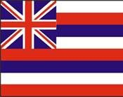 State flag. Hawaii