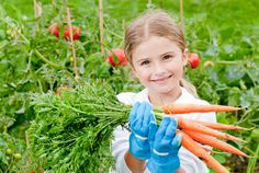 7 kid-friendly seeds for your child to grow this spring
