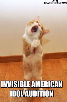 Invisible American Idol Audition