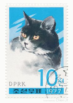 North Korea 1977 Cats and Dogs Stamp Series