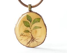 Real Plant Wooden Pendant  green sprout brown by UralNature