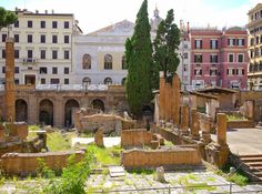 Largo di Torre Argentina in Rome is not only a historical site, but also a sanctuary for dozens of cats.