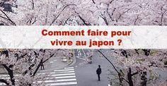 Vivre au japon : comment faire ? / #japon #japonais