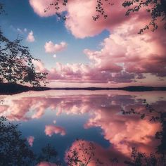 Pretty Reflection